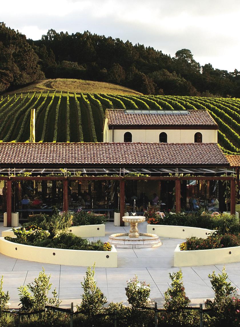 Auckland Weddings Venues | Ascension Wine Estate
